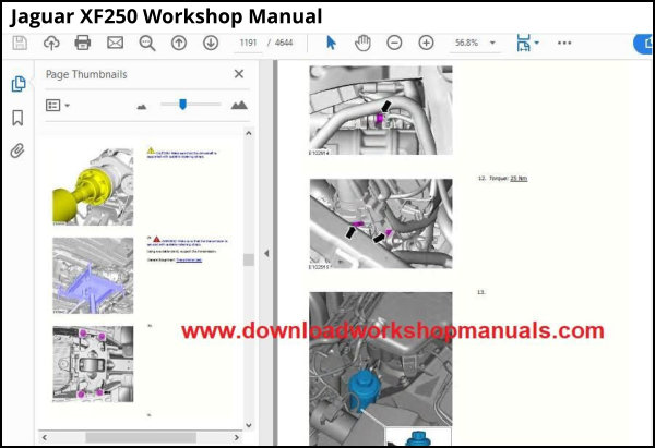 Jaguar XF250 Workshop Manual download