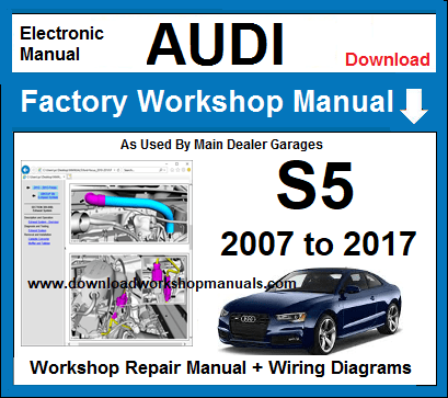 Audi S5 Service Repair Workshop Manual